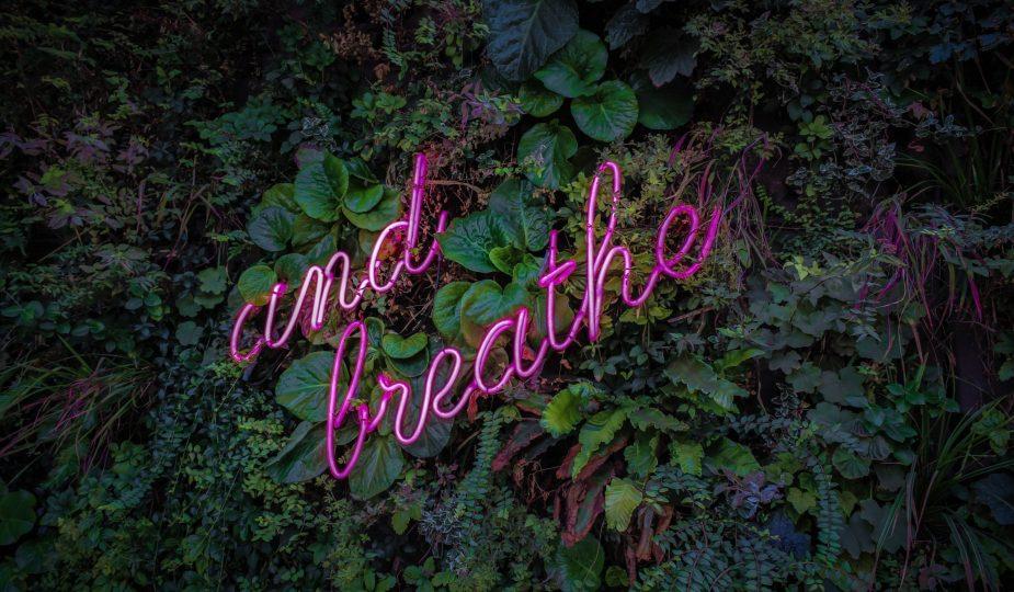 transformational breath
